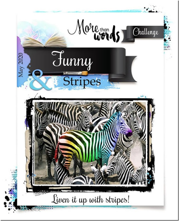 05 May - Funny & Stripes